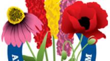 amazing flower farm