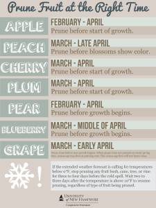 2014 pruning calendar