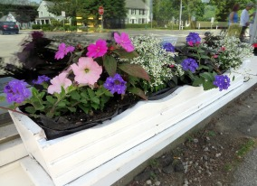 Moulton's Window Box