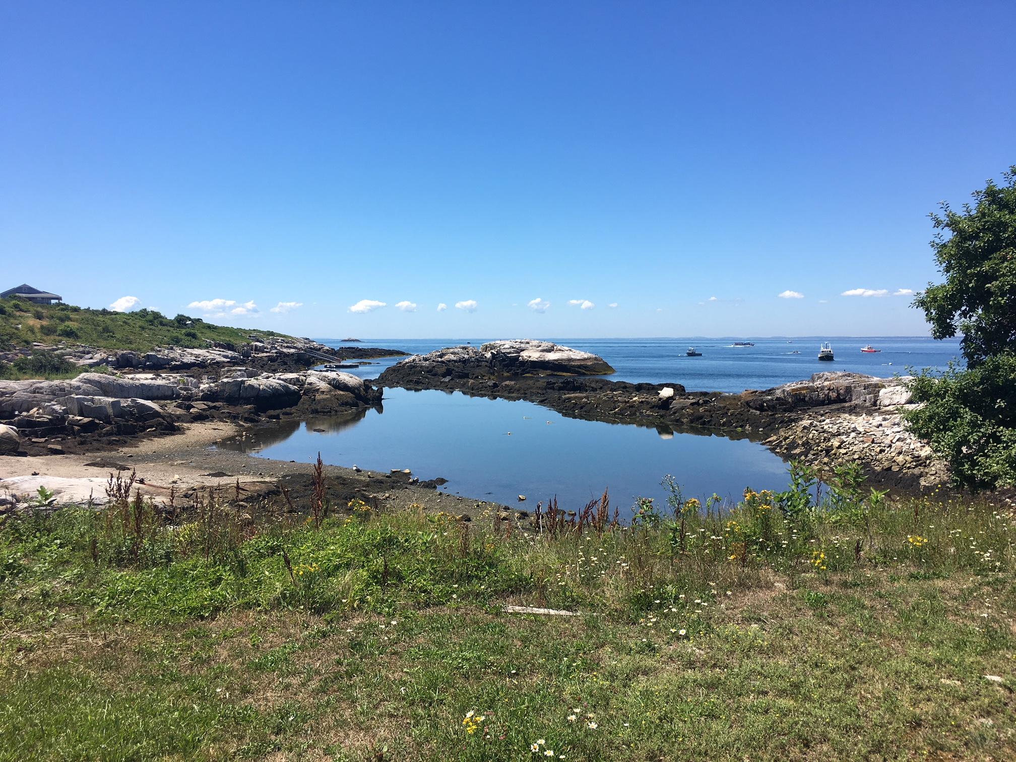 Trip Report: Celia Thaxter\'s Island Garden Tour – The Amherst NH ...